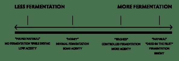 fermentation-charts1